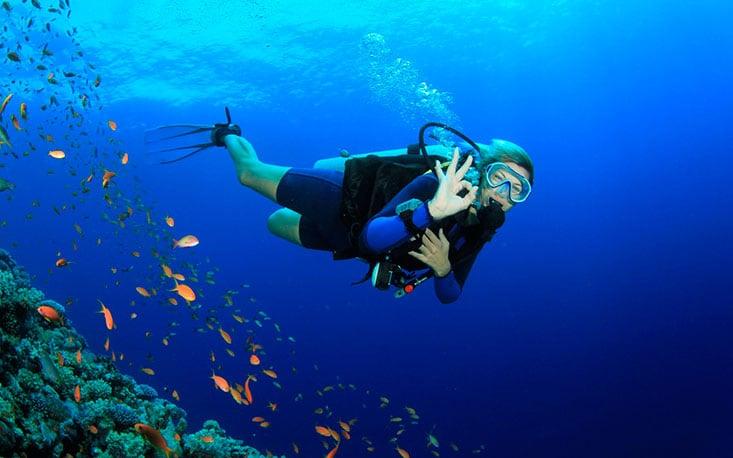 Lánzate a descubrir el fondo marino