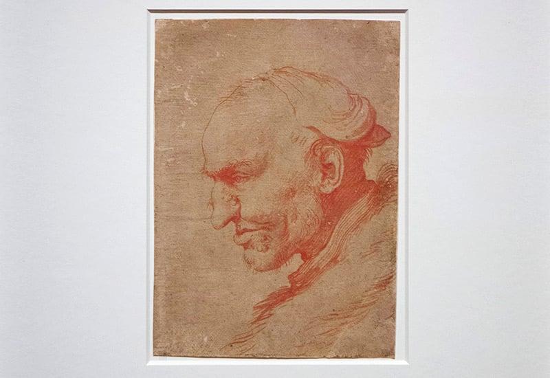 Cabeza de hombre de perfil (1627 – 1630)