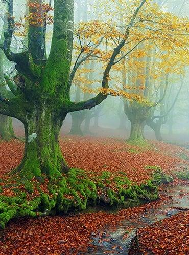 Las 7 maravillas desconocidas de España