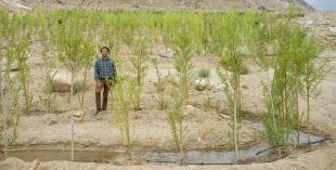 Premios Rolex a la Iniciativa: 40 años apostando por la preservación del medio ambiente