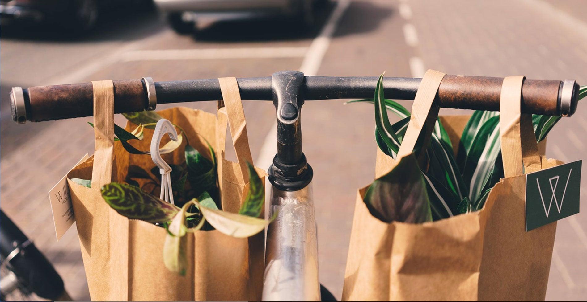 Seis envases sostenibles que serán tendencia en el futuro