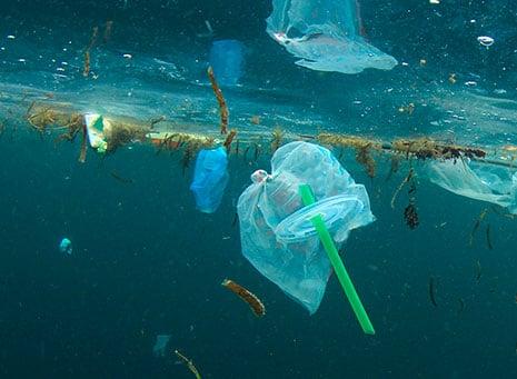Guerra a las pajitas de plástico