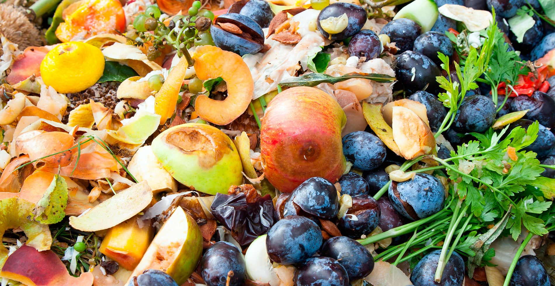 El desperdicio alimentario no es un juego