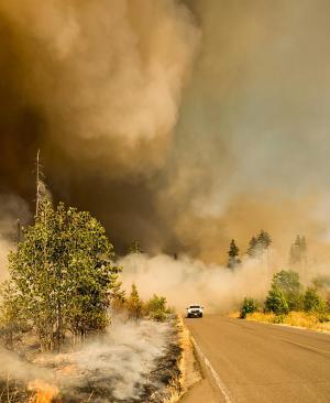 Tecnología contra los efectos de los desastres naturales