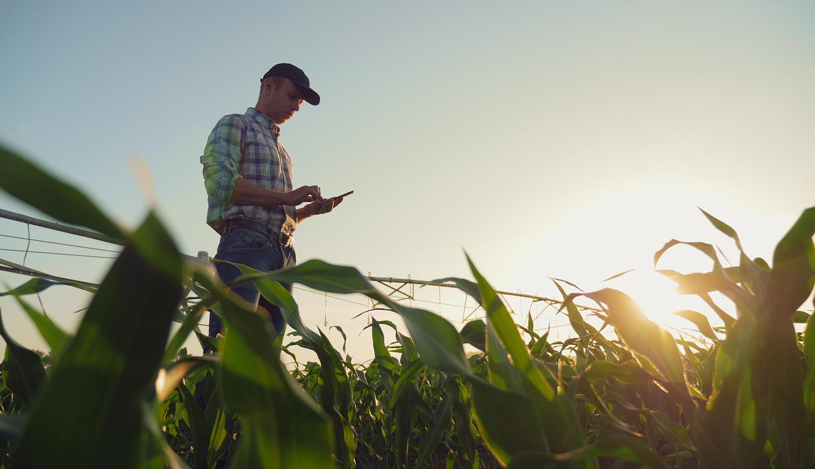 """""""Smart Agro"""", la revolución sostenible del sector agroalimentario"""