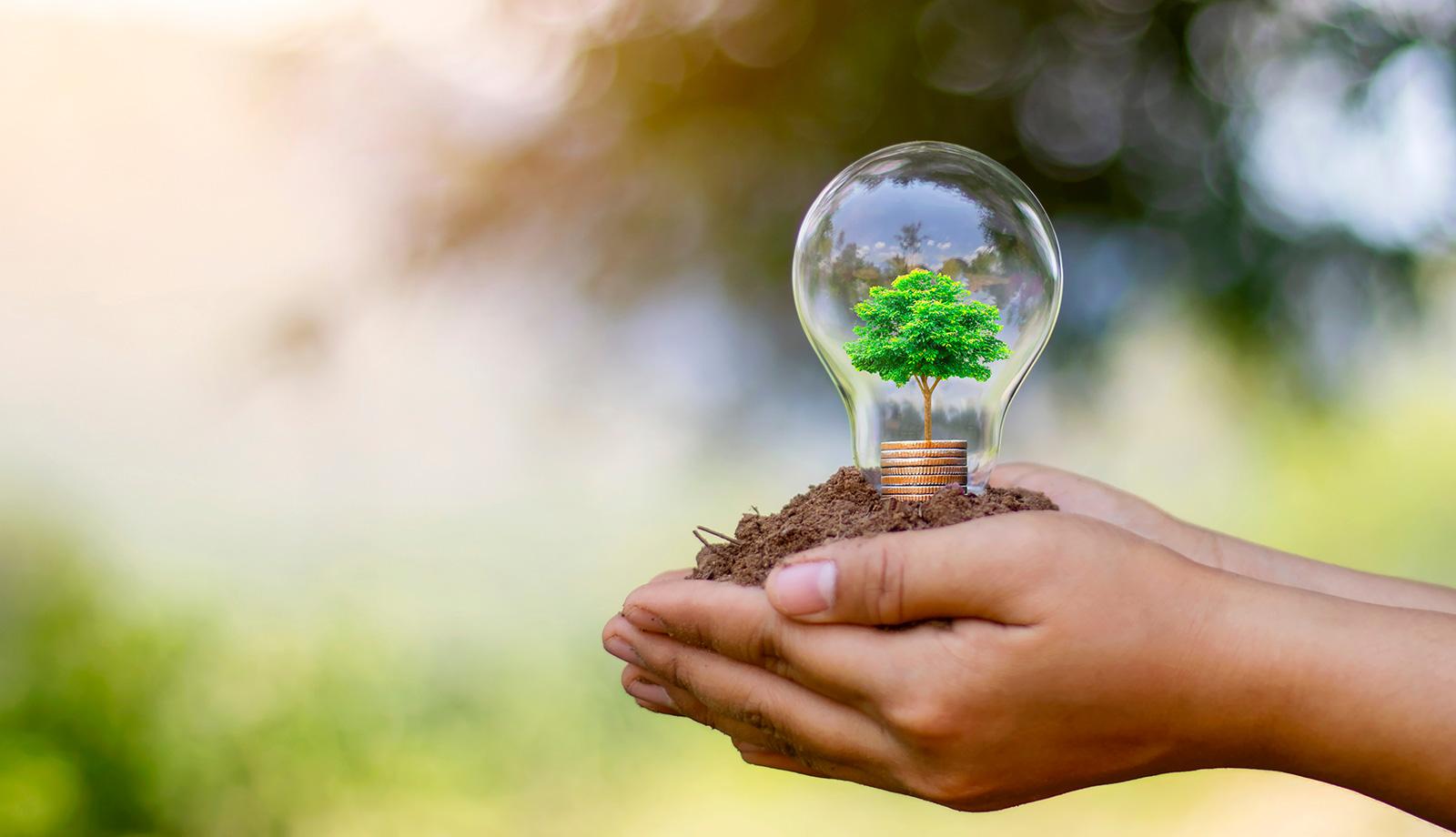 Cuando la lucha contra el cambio climático forma parte de la estrategia empresarial