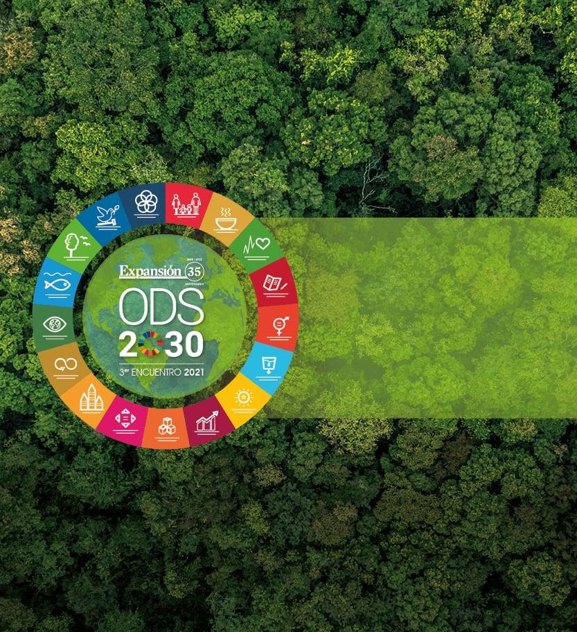 Los ODS en la agenda del CEO