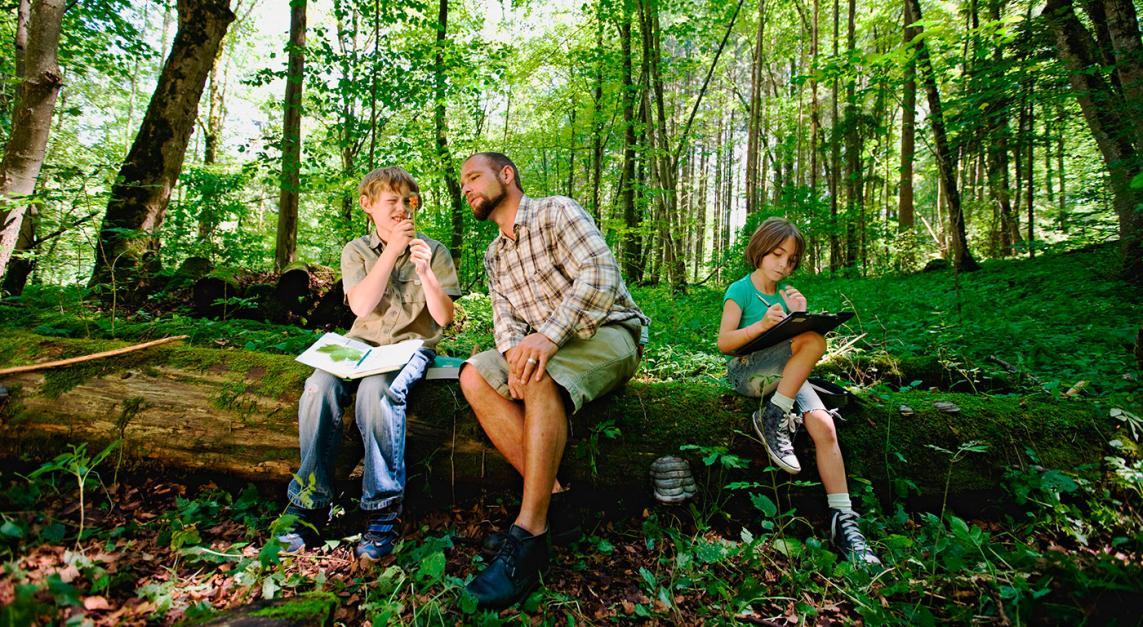 La educación que salvará los bosques