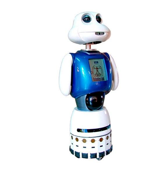Robot Maggie
