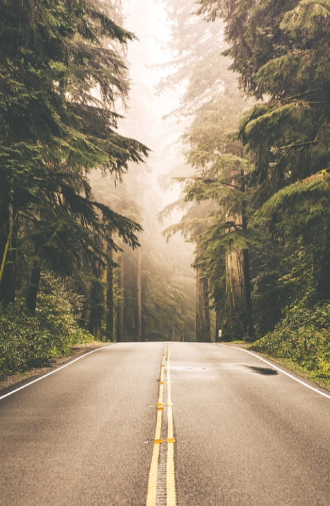 Los caminos que volverán a unirnos