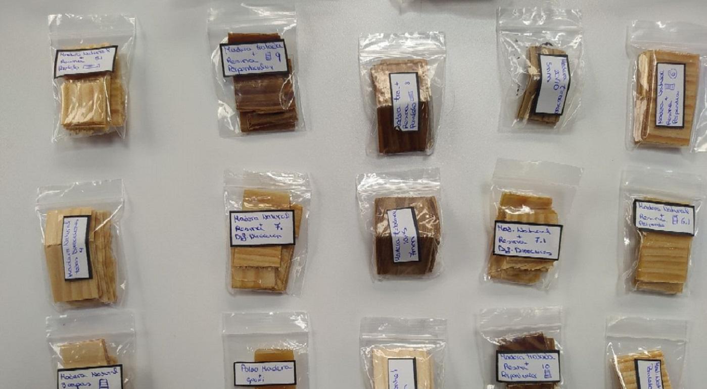Bivo, el laboratorio de materiales que nacen de los tejidos vegetales