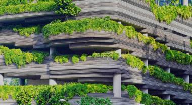 Las seis profesiones sostenibles del futuro