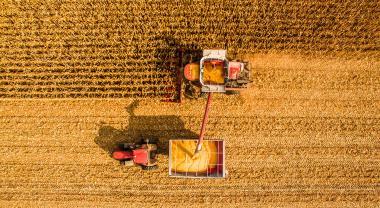 Los cultivos se adaptan a los nuevos patrones climáticos