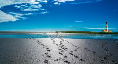 ¿Qué es la huella hídrica y por qué es importante?