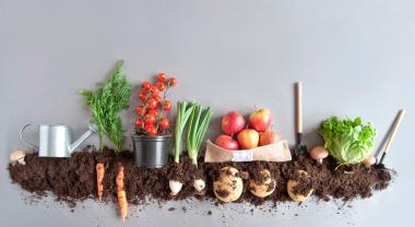 Alimentos bio, eco y orgánico, ¿son iguales?