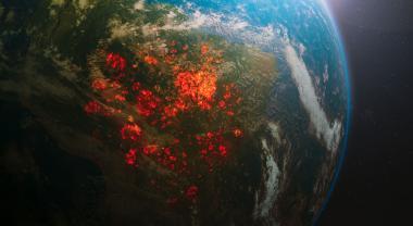 ¿Qué relación tiene lo que comes con que la Amazonia arda?