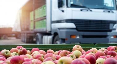 Alimentos kilométricos: el largo (e innecesario) viaje de la manzana