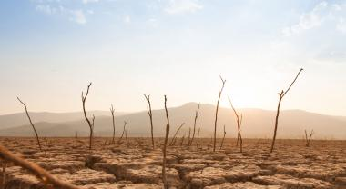 Emergencia climática, una carrera contrarreloj