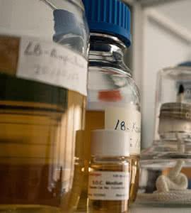 La lucha contra las enfermedades raras está en los genes